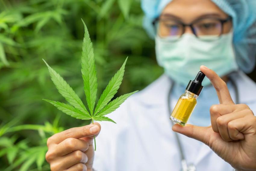 Cannabinoids, Cannabis, Cancer treatment