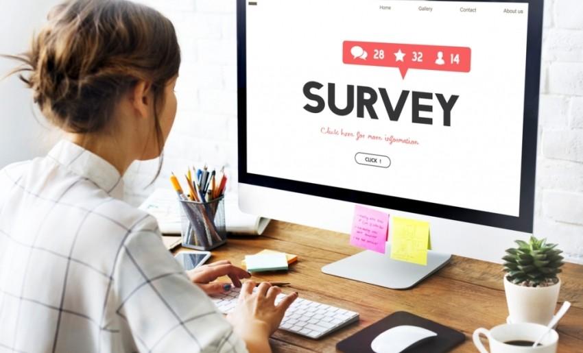 websites, surveys, make money