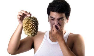 durian fruit, odor, Thailand