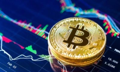 Cryptocurrency Bitcoin, Profitability