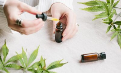 What is Cannabidiol CBD Oil from Cannabis Good For?
