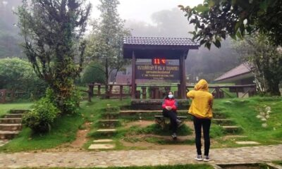 Tourists Enjoy 11-Degree Weather at Doi Inthanon in Chiang Mai