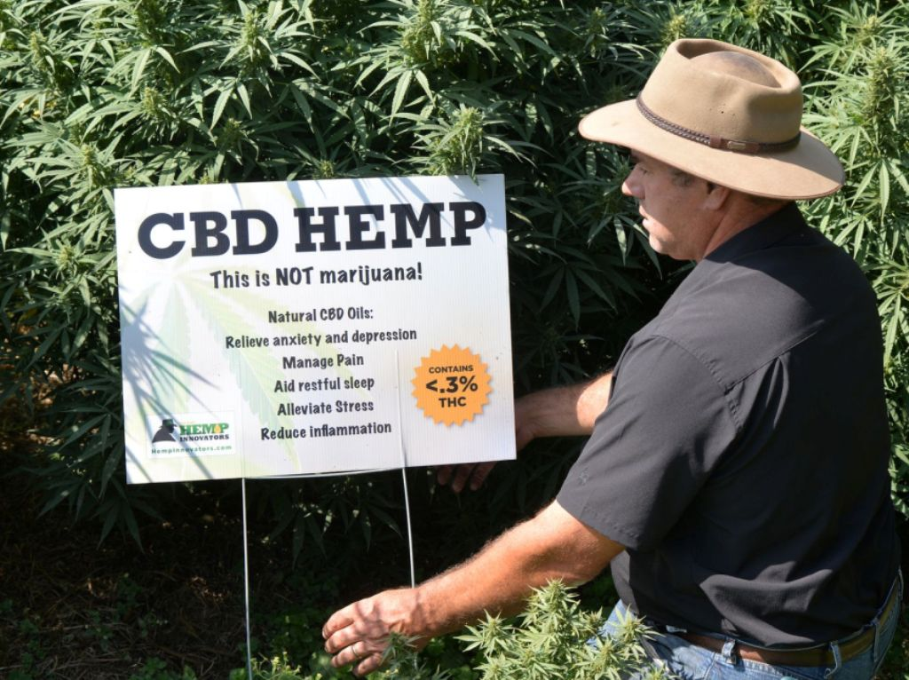 Farmer's Seeing the Economic Benefit With the Demand for CBD