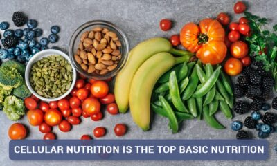 Discover Why Cellular Nutrition is the Top Basic Nutrition
