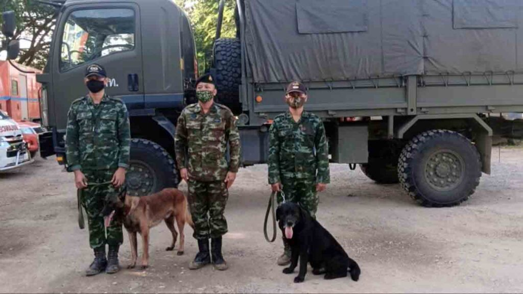 Pha Muang Force using sniffer dogs at border