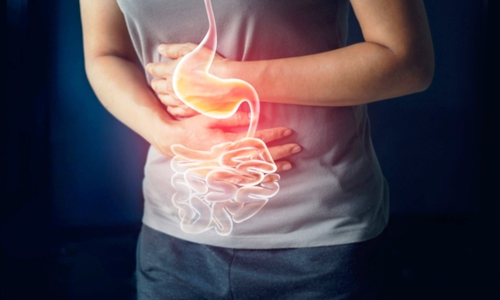 6 Unique Things That Harm Your Gut Bacteria in Your Digestive System