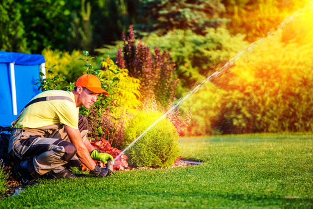 Simple Tips to Keep Your Lawn Looking Lush Year-Round
