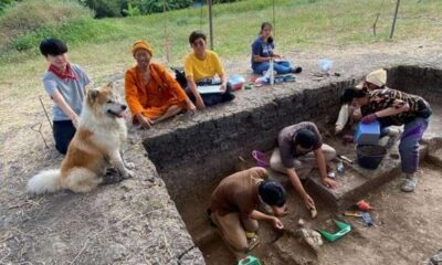 Site,Archaeology Students Discover 3,000 Year Old Skeleton in Thailand
