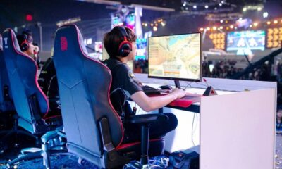 Esports Organizations: Investment and Competition