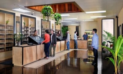 Leaning How to Start a Cannabis Dispensary in California