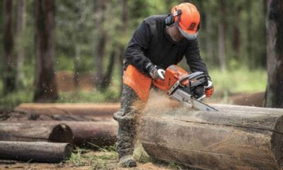 Learning About Chainsaw Maintenance and Troubleshooting Tips
