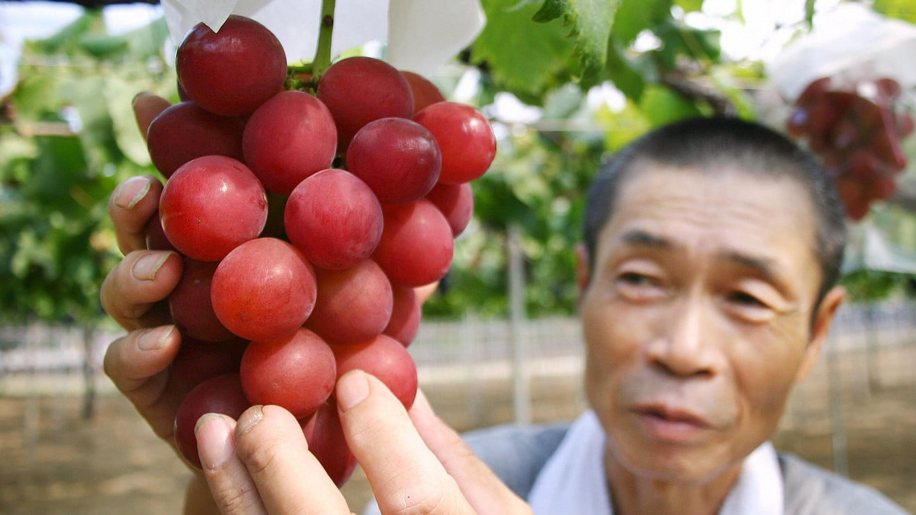 Tests on Thai Fruit Finds Red Grapes with High in Chemical Contamination