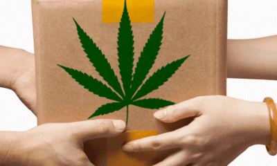 Top Benefits Of Buying Weed From Online Medical Dispensaries