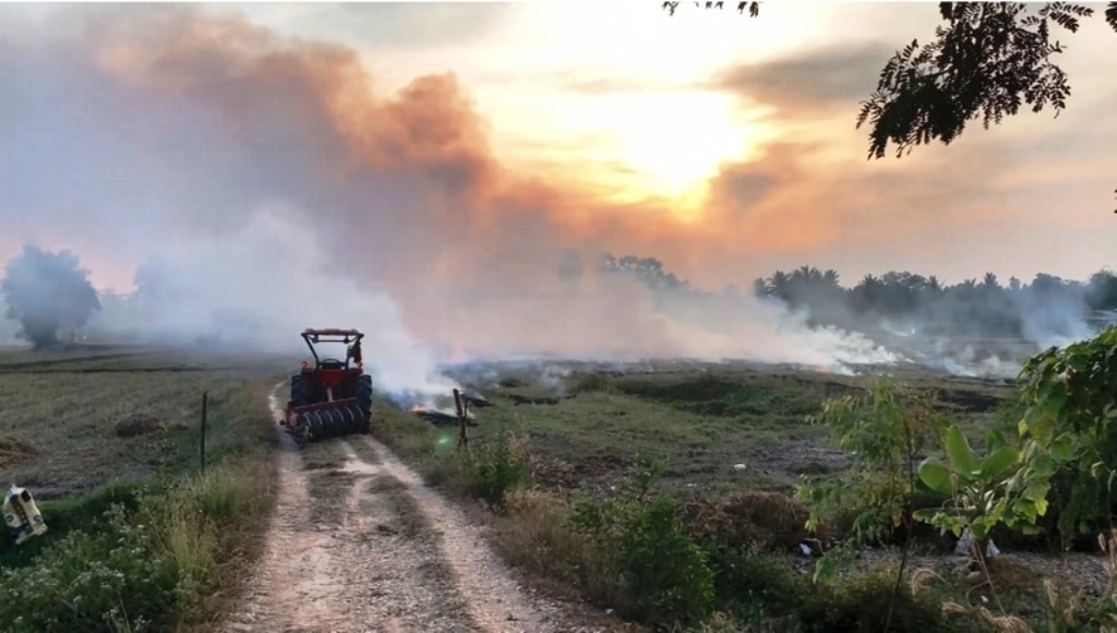 Authorities Intensify Efforts to Reduce Field Burning in Northern Thailand