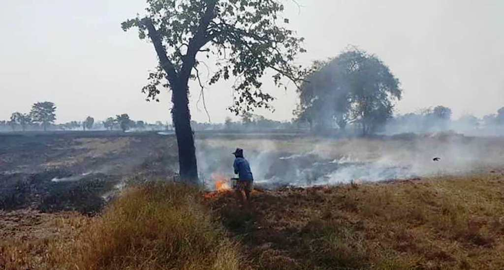 Farmers Burning Fields Spikes PM2.5 Particles in Northern Thailand