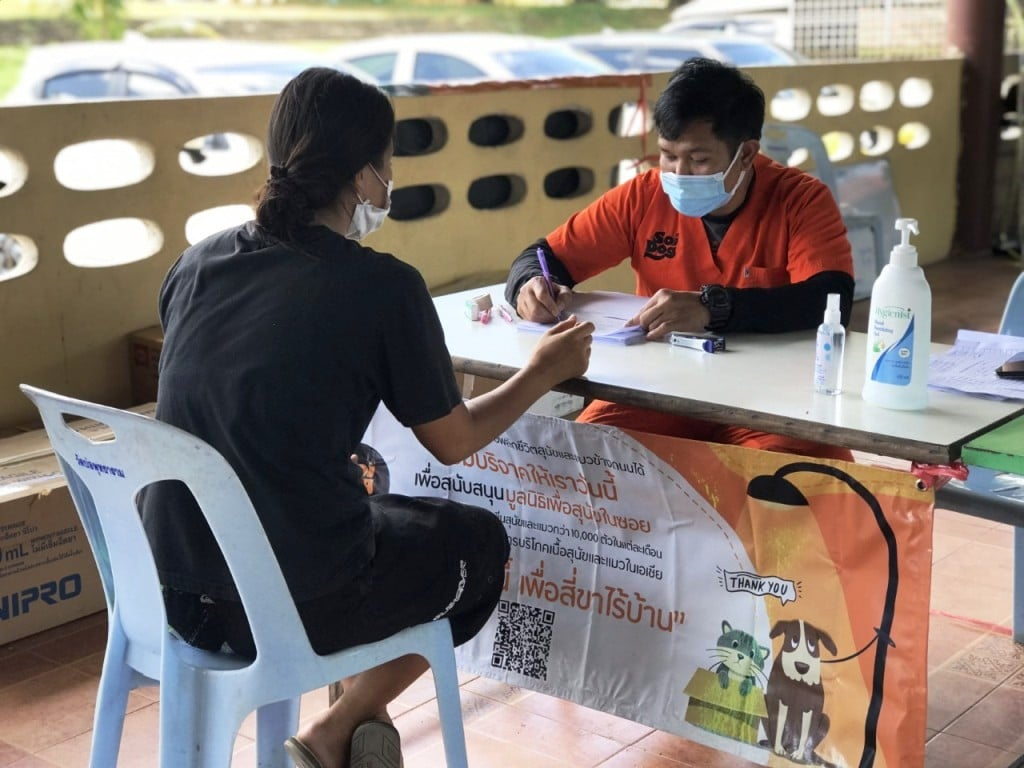Soi Dog Foundation has set up a mobile sterilization and vaccination clinic on Koh Samui in collaboration with Koh Samui