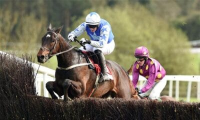 Victory in Irish Gold Cup Makes Kemboy a Major Cheltenham Contender