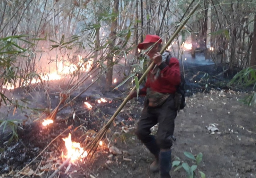 Firefighter Struggle to Contain Wildfires in Northern Thailand