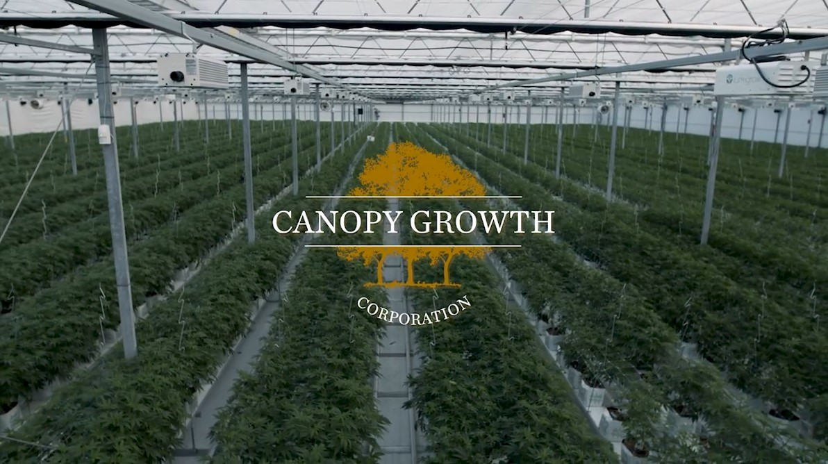 https://www.canopygrowth.com/about/leadership-team/chief-executive-officer/