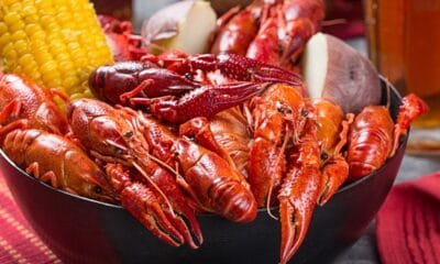 Crayfish: A Southern Recipe for a Delicious Crawfish