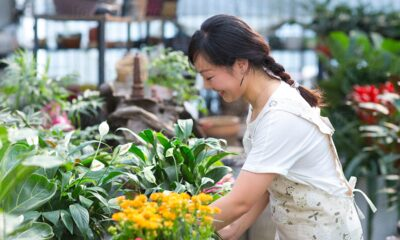 How to Find and Choose the Right Florist for Special Occasions