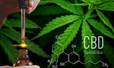 Understanding the Health Benefits CBD Oil and How its Used in the UK