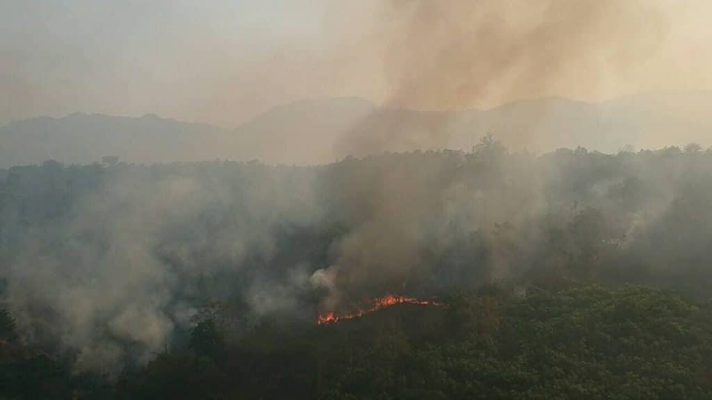 Wildfires Intensify in Northern Thailand Hindering Air Quality