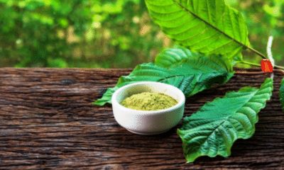 Learning the Healing Properties of Kratom Powder from Southeast Asia