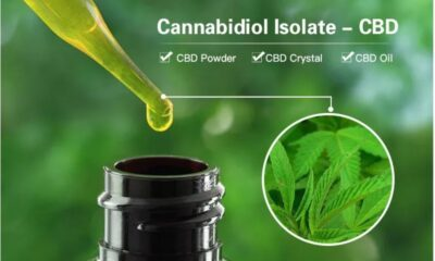 Finding the Best CBD Oil Products for Reducing Pain and Insomnia