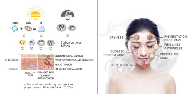 skin, pollution, pollutants