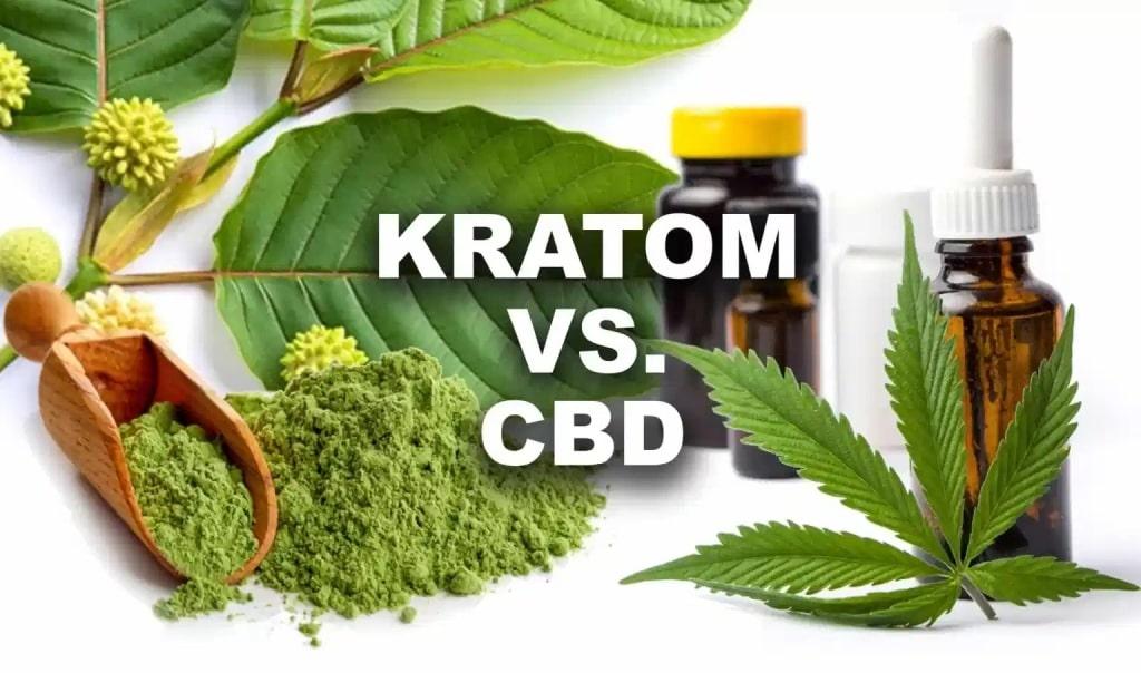 CBD,Kratom, CBD oil, kratom leaf
