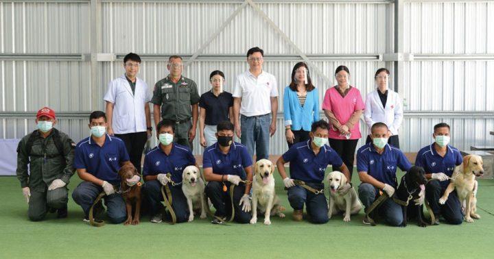 Bangkok Uses Labrador Retrievers as Sniffer-Dogs for Covid-19