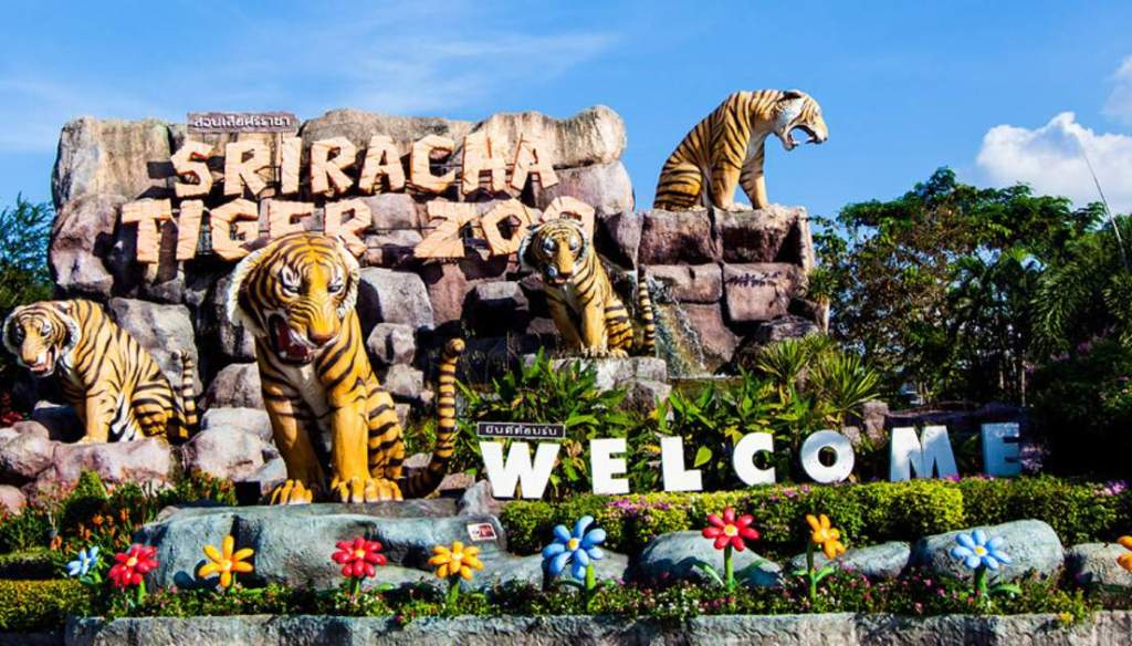 Owners of Sriracha Tiger Zoo Rebuff Facebook Closure Statement