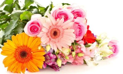 The Most Gorgeous Flowers That Will Actually Last
