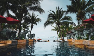 Life and Work in Thailand: An Interview with an Islander from Ukraine