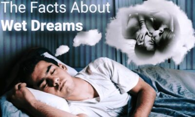 7 Myths about Nightfalls and What You Need to Know Wet Dreams
