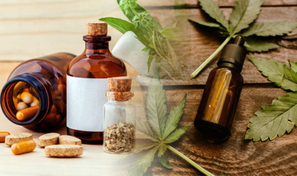 CBD Capsules or CBD Oil: How to Pick Your Cannabidiol Product