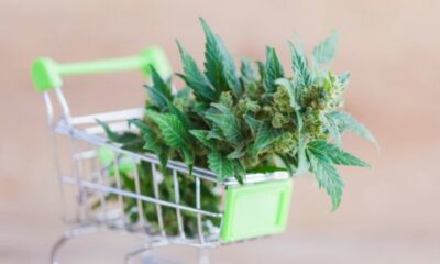 Delta 8,Where to Find Weed Online in 2021: Learn How to Buy Weed Online
