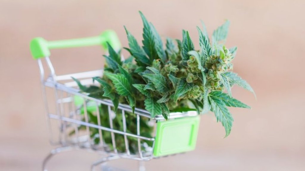 Where to Find Weed Online in 2021: Learn How to Buy Weed Online - Learning