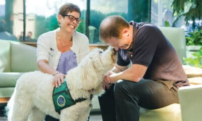 Addressing Stress and Anxiety Treatment Through Pet Therapy