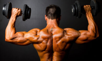 Develop Bigger Muscles With Muscle Hypertrophy Training