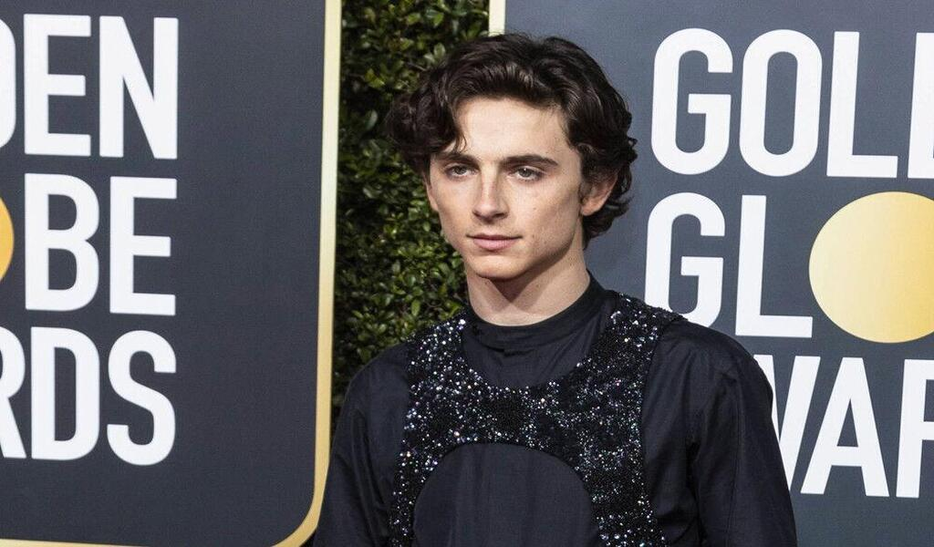 Dune Might not have been Made if Timothee Chalamet didn't Agree to his Role