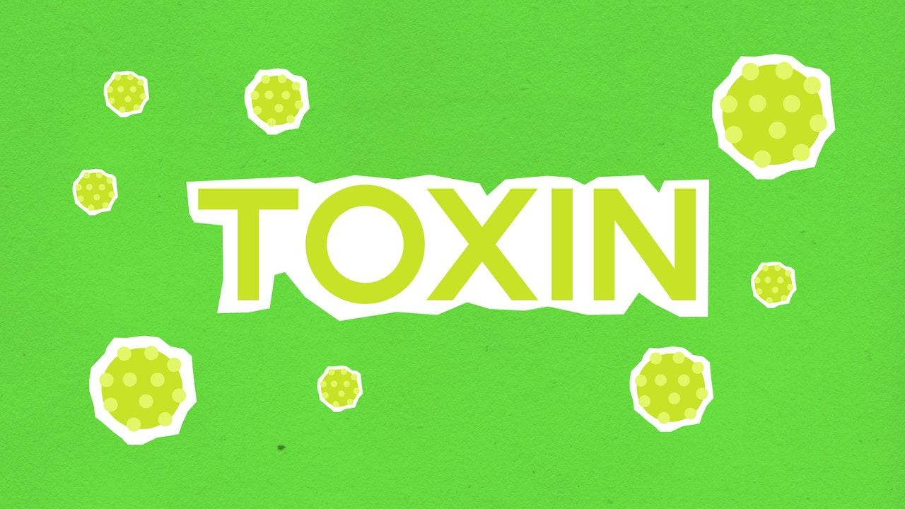 Learning 5 Ways To Remove Unwanted Toxins From Your Body