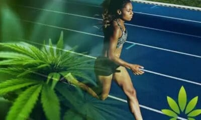 BENEFITS OF USING CANNABIS FOR ATHLETES