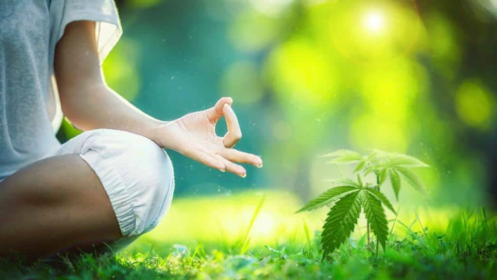 4 Tips for Incorporating Cannabis into Your Yoga and Meditation