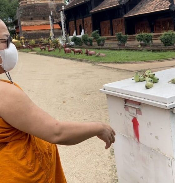 Chiang Mai, Northern Thailand Temple Ends Happiness Box Due to Abuse and Greed