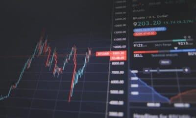 The 3 Common Types of Stock Market Investors – Which One Are You?