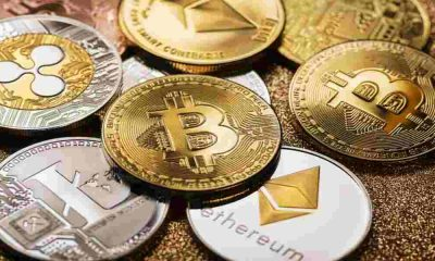 Cryptocurrency-Trading-Platform Cryptocurrency-Trading-bots