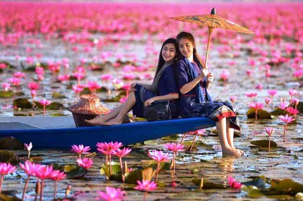 Best Time To Visit Red Lotus Lake Thailand