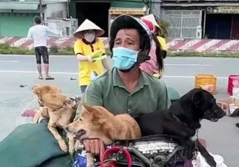 pet-dogs-vovid-19-vietnam